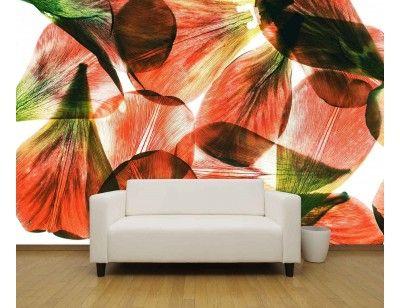 """""""Tulip Petals"""". A wall mural from Muralunique.com. https://www.muralunique.com/tulip-petals-12-x-8-366m-x-244m.html"""