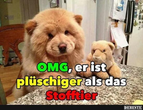 Besten Bilder Vi Lustiger Tiere Besten Bilder Lustigertiere Facebook Humor Super Cute Animals Funny