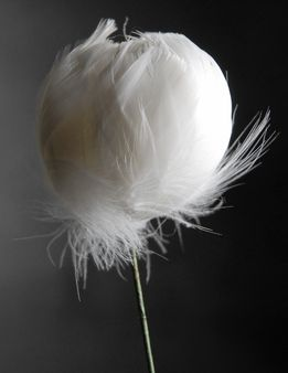 Feather Flowers on Wire Stem -- White save-on-crafts