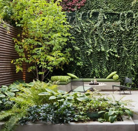 A Carroll Gardens garden designed by Susan Welti of Foras Studio for Carin Goldberg and Jim Biber of Pentagram (originally published in Domino).  Outdoors: Modern Townhouse Garden Roundup : Remodelista Townhouse gardens in in New York by Steven Harris Architects.: Townhouse Courtyard, Garden Design, Green Wall, Townhouse Garden, Small Garden