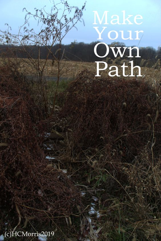 image of a deer path with words