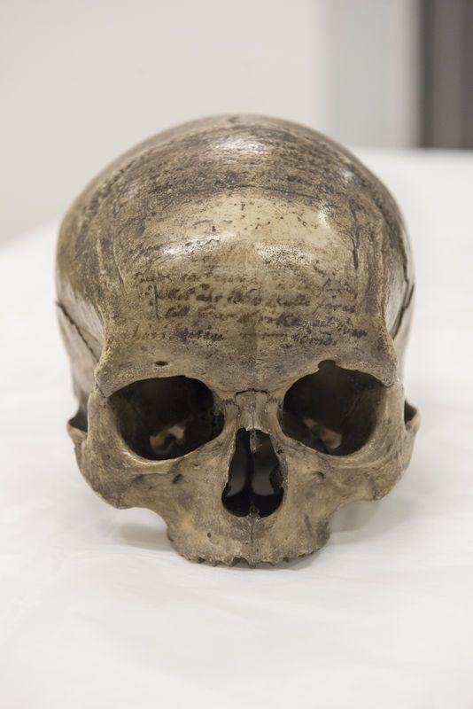 Le crâne de Descartes - NICOLAS KRIEF POUR LE MONDE