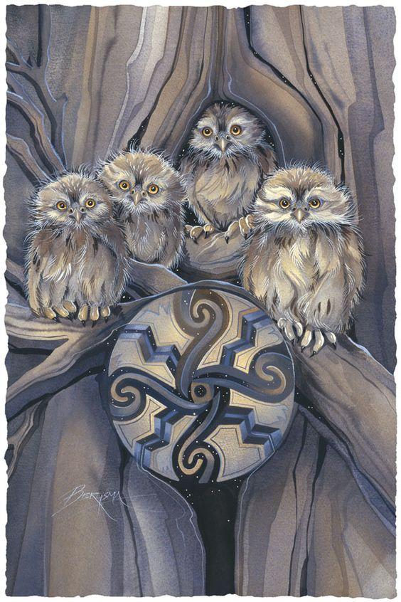 Little Owl Medicine by Jody Bergsma