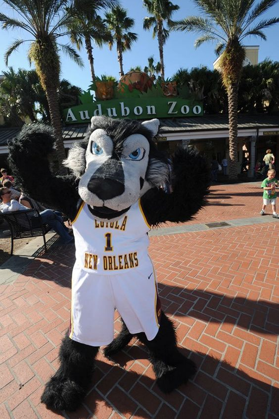 Loyola University New Orleans' Havoc T. Wolf heads to the Audubon Zoo to catch up with his pals from the wild!