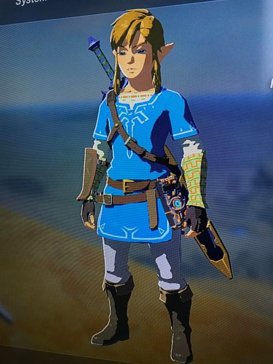Does Anyone Else Play Wearing Just The Champion S Tunic Like If It Were A Traditional Zelda With Minimal Breath Of The Wild Legend Of Zelda Memes Link Costume
