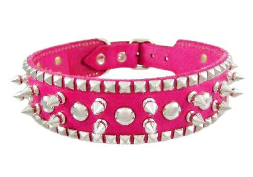 hot pink dog collar for miss bailey