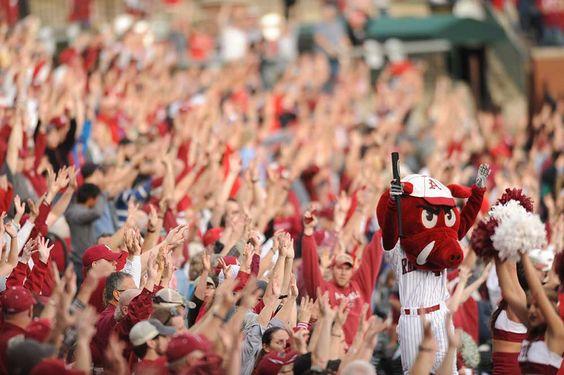 Ribby the Razorbacks baseball mascot celebrates with Hogs fans after an Arkansas score.