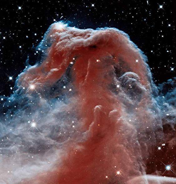 À travers le nuage La nébuleuse de la Tête de cheval apparaît avec une précision inédite sur ce cliché en infrarouge. Jusqu'alors, les photos astronomiques la faisaient apparaître sombre sur fond brillant. Mais la caméra grand-angle n° 3 de Hubble a percé le nuage interstellaire de gaz et de poussière. Un avant-goût de ce que l'on attend du télescope spatial infrarouge James Webb, en développement à la Nasa.