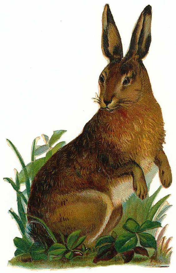 Cards Scrapbooking and Art: Freebies: Vintage Animals Rabbits: