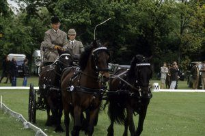 The Duke of Edinburgh at the Royal Windsor Horse Show in 1975.