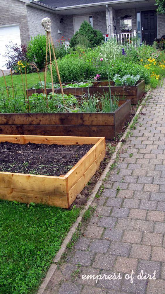Front Yard Vegetable Gardens Raised Beds Garden 640 x 480