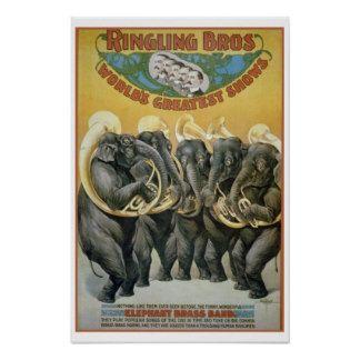 Zirkus-Elefant-Blaskapelle Plakate