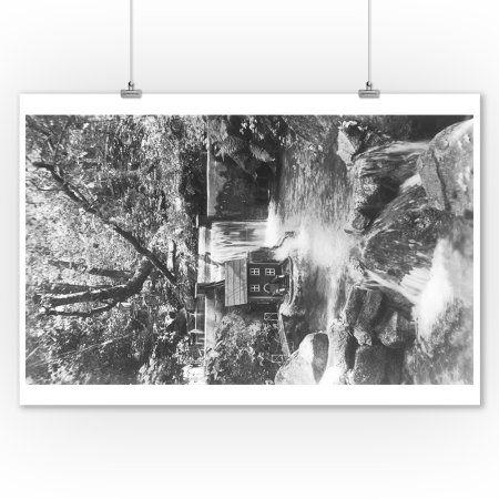24 x 24 Lodge Fauna I FB Poster Print by Studio Mousseau