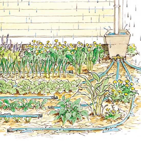 Think beyond the rain barrel: This simpler, cheaper approach will help you harvest much more water for your garden!