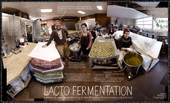 "#90 ""Lacto Fermentation"" by Douglas Gayeton, via 500px"