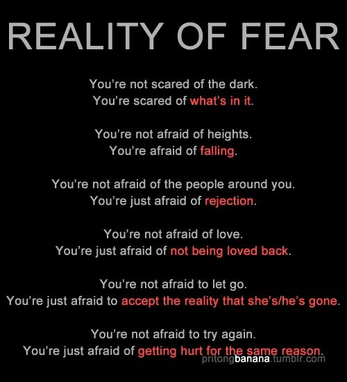 You're Not Afraid Of Love,, You're Just Afraid Of (NOT