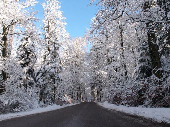 El invierno ya llego de Pablo Rodriguez Rego
