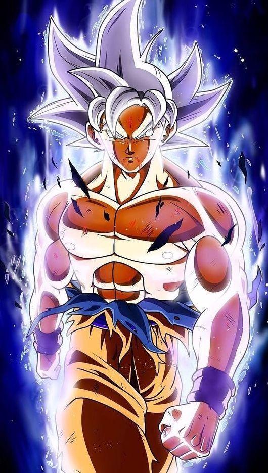 Goku Ultra Instinct Dragoes Goku Desenho Dragon Ball