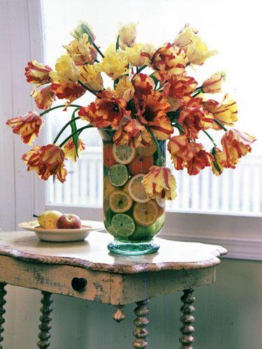 Tulip Parrots And Vase On Pinterest