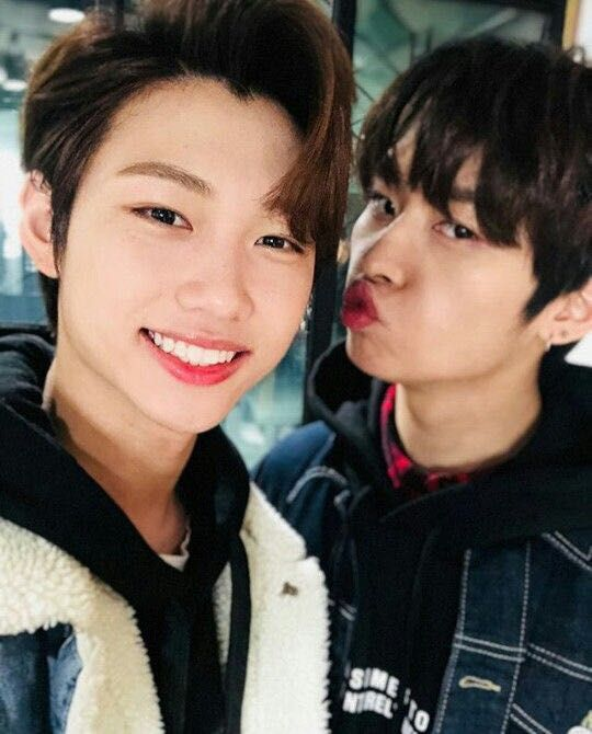 My Bestfriend Stray Kids Minho Collabs Can Be Fun Felix Stray Kids Stray Kids Seungmin Lee Know Stray Kids