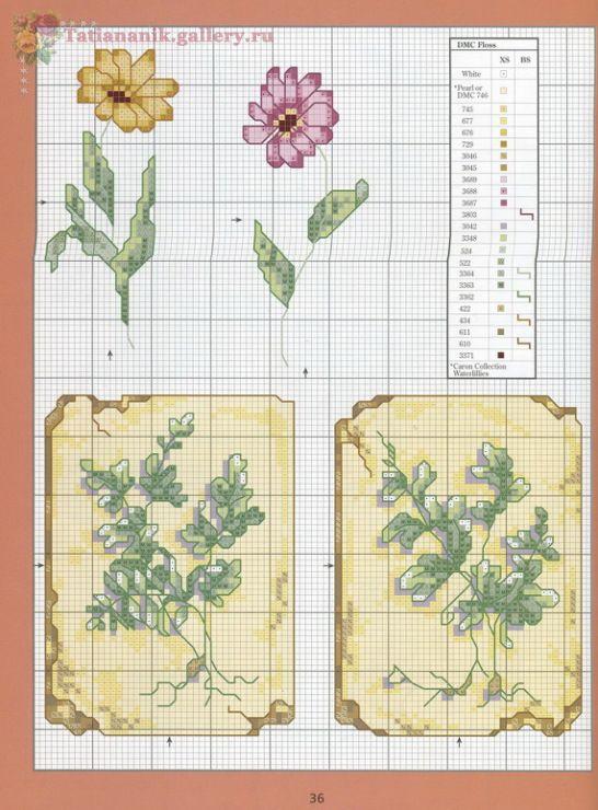 Gallery.ru / Фото #30 - *Marie Barber*Cross-Stitch Florals - Tatiananik