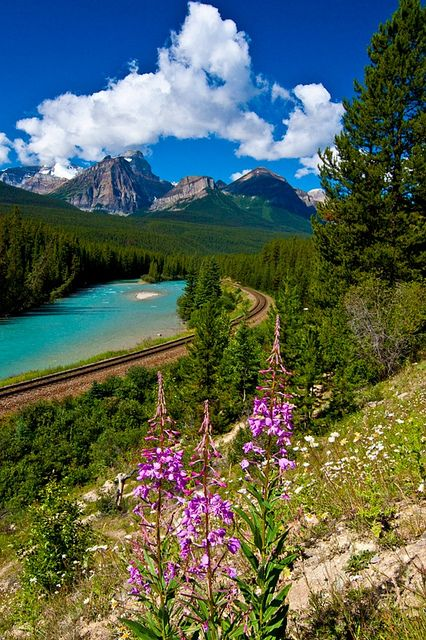 Morant's Curve in Banff National Park, Alberta, Canada  I would love to see this area of the world.