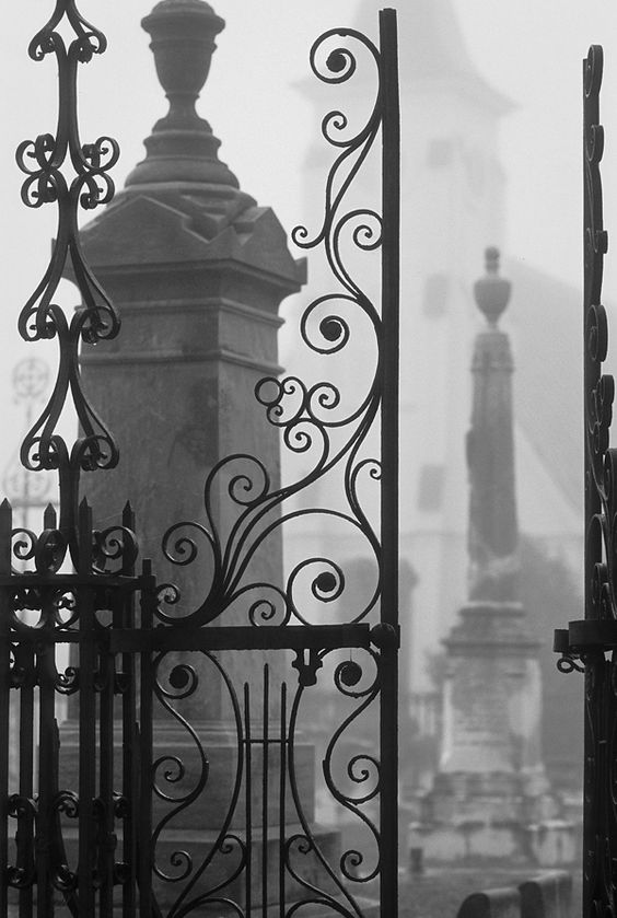 Cemetery gate in the mist, Charleston, SC  © Doug Hickok  All Rights Reserved   hue and eye   the peacock's hiccup
