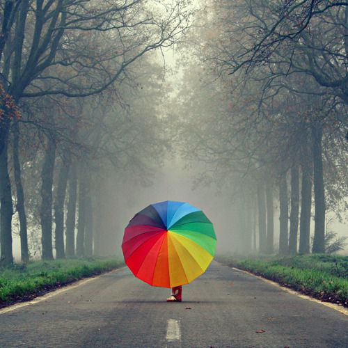 a rainbow in the road.