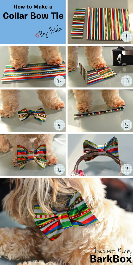DIY How to Make a Collar Bow Tie with wrapping paper