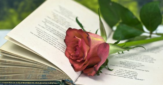Poesias que só entende quem está apaixonado
