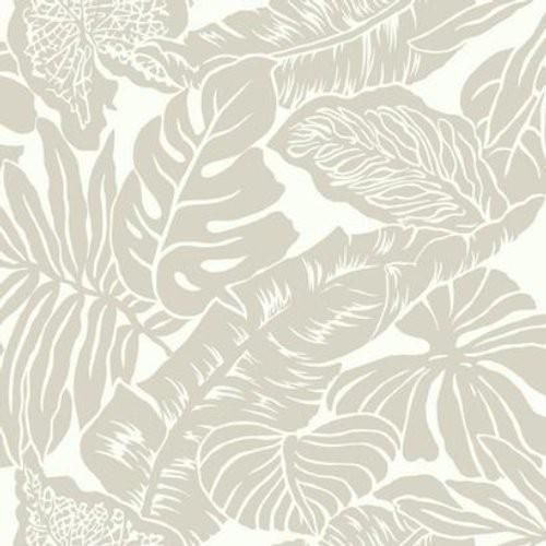 Ashford House Valdivian Sw7430 Wallpaper In 2020 Palm Wallpaper Floral Wallpaper York Wallpaper