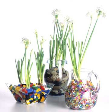 Great ideas for the 'soil' on these paperwhites!