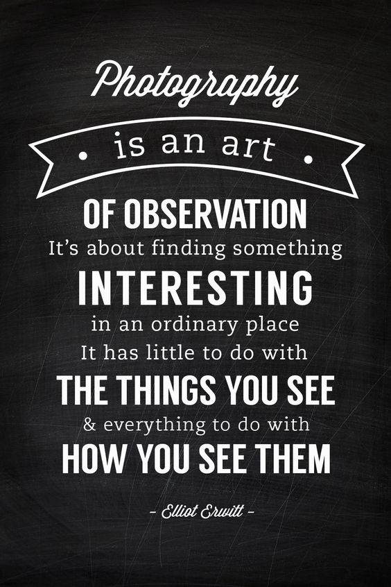 """""""It has little to do with the things you see and everything to do with how you see them."""" -Elliot Erwitt >>> This is so true! I love this quote! #PinUpLive"""
