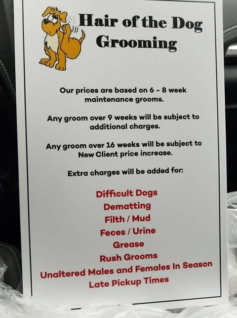 Pin By Katy Hamilton On My Business Idea Dog Grooming Shop Dog
