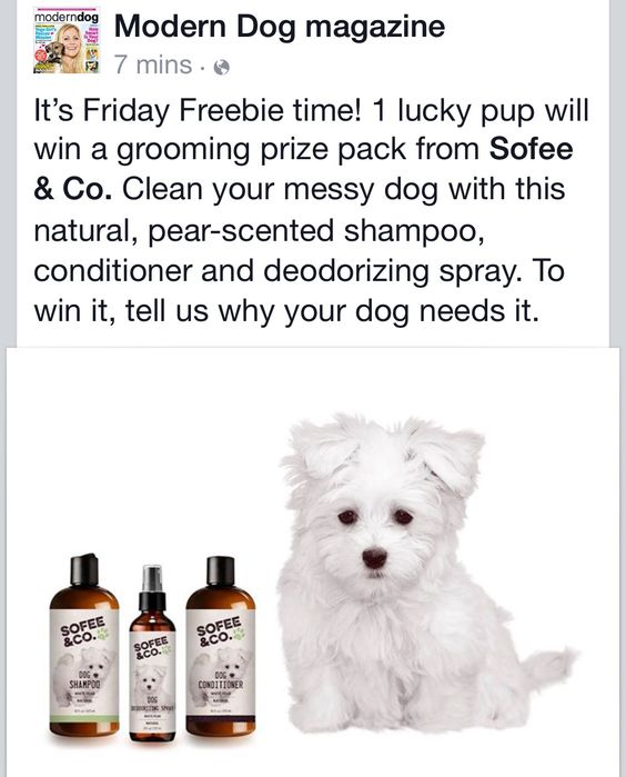 Enter Modern Dog Magazines Friday Freebie contest on Facebook for a chance to win a luxury grooming pack from Sofee & Co.