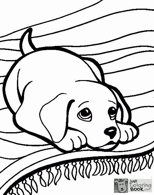 Cute Horse Coloring Pages Dog Coloring Book Horse Coloring
