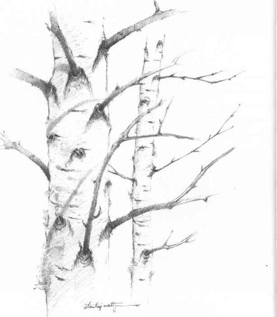 1794_55_107-simple-tree-drawings.jpg (614×704)