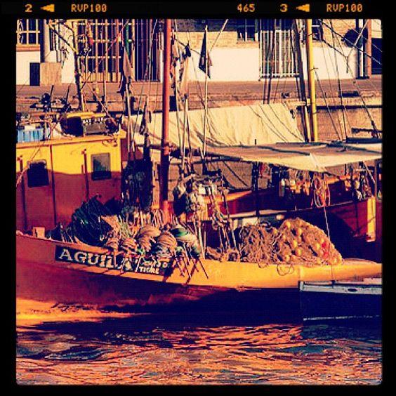 Embarcación en el muelle del Delta en Tigre - @tigremunicipio- #webstagram
