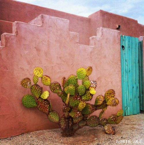Adobe turquoise and blue doors on pinterest for Southwest desert color palette