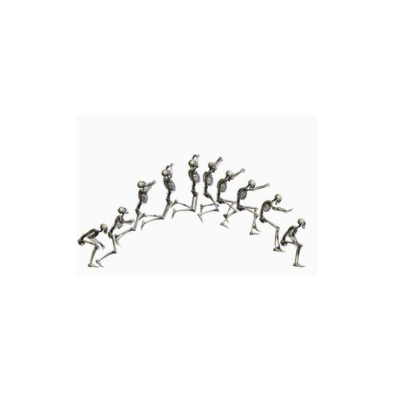 Sequence Illustrating a Human Skeleton Jumping Giclee Print Wall Art ($36) ❤ liked on Polyvore featuring home, home decor, wall art, skeleton home decor and giclee wall art