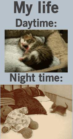 My life: Daytime vs. Nighttime.