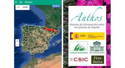 Naturaleza y Voluntariado Ambiental: La biodiversidad de las plantas en España, ahora d...