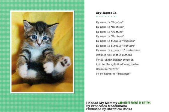 I Knead My Mommy And Other Poems By Kittens The Book Cat Poems Cat Books Kittens