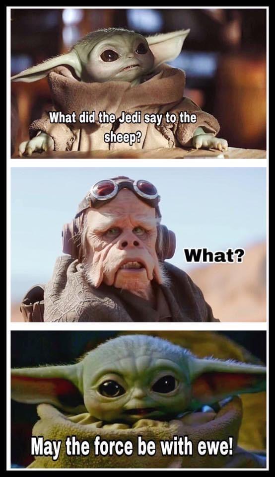 Pin By Jorge Alejandro Garcia Zorrill On Baby Yoda Yoda Meme Star Wars Memes Corny Jokes