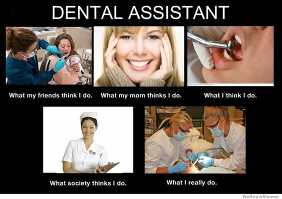 Dental Assistant best degree to have