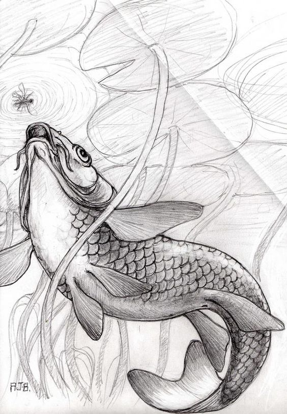Image Detail For -Koi Carp Underwater Design In Tattoo Designs And