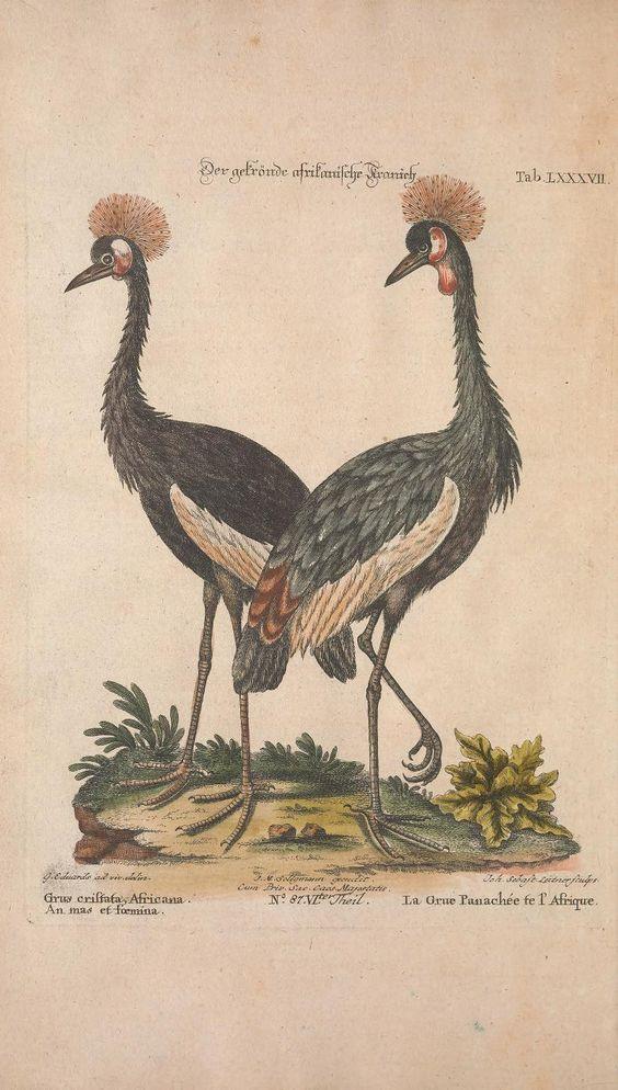 1768 in literature