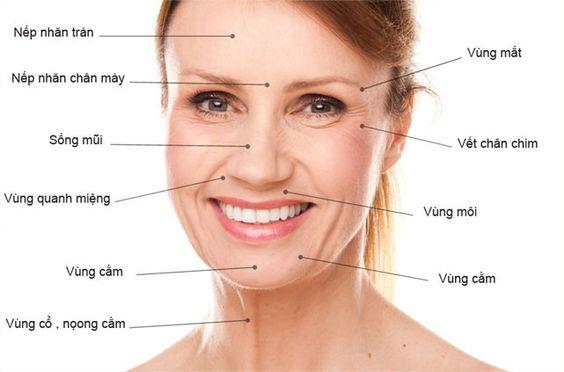 Những cách chống lão hóa da mặt cần biết - Mật bí chống lão hóa da mặt