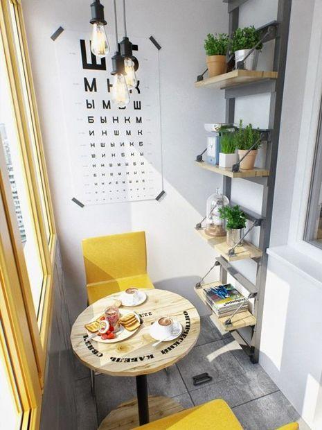 Plantas dentro de casa. Se inspire nas dicas de como decorar com plantas!