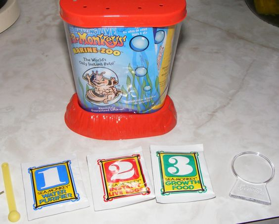 Sea Monkeys I Won T Even Talk About It But This Never Went We Ll Sea Monkeys Toys In The Attic Pineapple Under The Sea